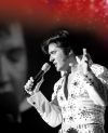 Elvis - Das Musical in Düsseldorf -- Tickets sichern, wird bestimmt voll !!